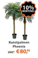 Kunstpalmen Phoenix